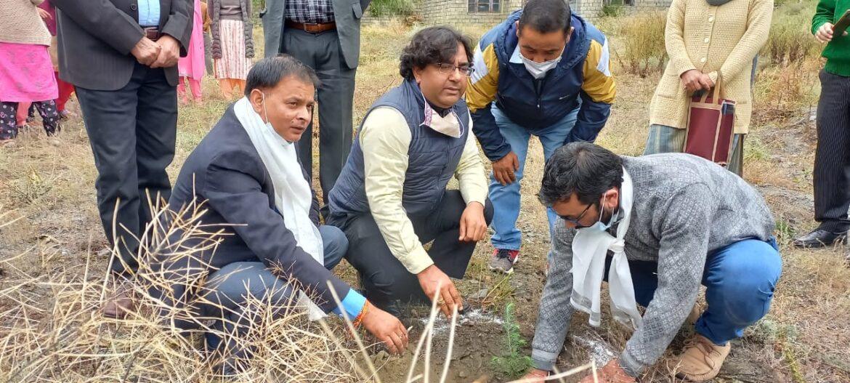 """लाहौल में """" बाहरा विश्विद्यालय का """"कीप हिमाचल क्लीन , पौधरोपण अभियान"""